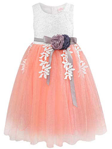 Bonny Billy Girl's Pageant Ruffle Lace Embroidered Wedding Party Flower Girl Dress