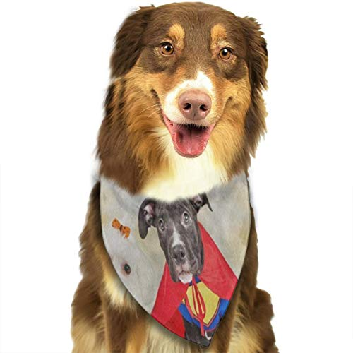 Dog Bandana Hipster Puppy Dog Dressed in Halloween Costumes Dog Scarf Great Pet Triangle -