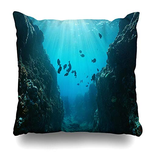 Ahawoso Throw Pillow Cover Square 20x20 Sea Blue Trench Small Canyon Underwater Carved by Marine Swell Ocean Nature Undersea Under Design Rocky Pillowcase Home Decor Cushion ()