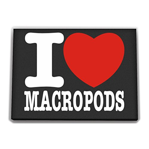 Idakoos - I love Macropod - Animals - Ca - Macropod Animals Shopping Results