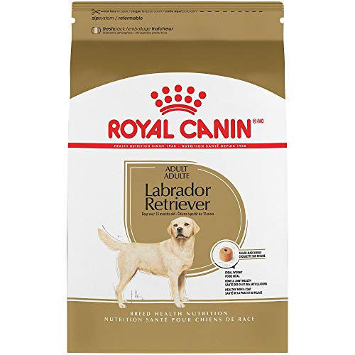 Royal Canin Breed Health Nutrition Labrador Retriever Adult Dry...