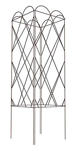Bulk Buy of Panacea Four Panel Tomato Towers, Brown, 50''H
