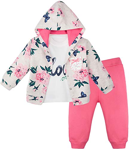 (Lilax Baby Girs Floral Vintage T-Shirt, Pant, and Hoodie Outfit Set 12 Months Pink)