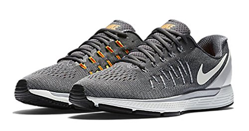 Nike Herren 844545-002 Trail Runnins Sneakers Grau