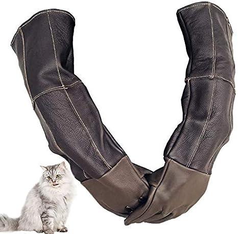 Skudy - Guantes de protección antimordeduras para Mascotas, para ...