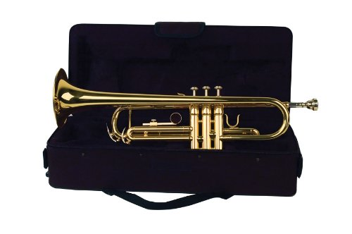 Palatino WI-815-TP B Flat Trumpet with Case by Palatino