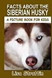 Facts About the Siberian Husky (A Picture Book for Kids, Vol 261)