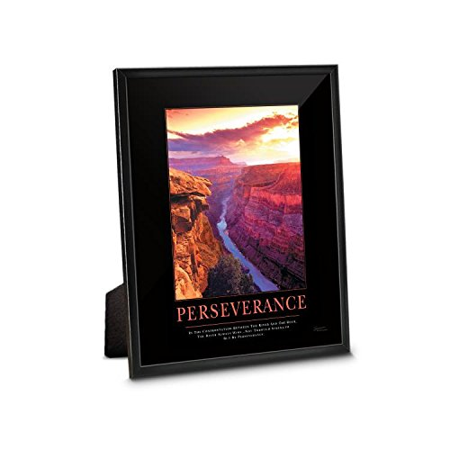 Successories Black Aluminum Perseverance Grand Canyon Framed Desktop Print