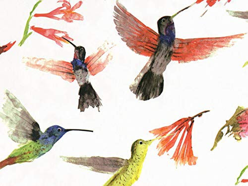 (Hummingbird Tissue Paper for Gift Wrapping, Beautiful Watercolor Hummingbirds Design, 24 Large Sheets (20x30))