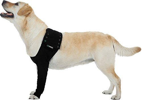 (Suitical Dog Recovery Sleeve Large Black)