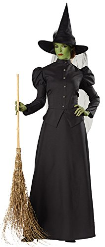 Adult Classic Deluxe Costumes Witch (Womens Halloween Costume- Witch Classic Deluxe Adult Costume)
