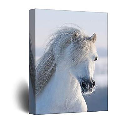 Peaceful Horse Beauty - Canvas Art