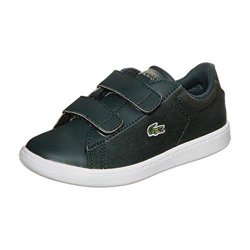 Lacoste Carnaby Evo Sneaker Kleinkinder