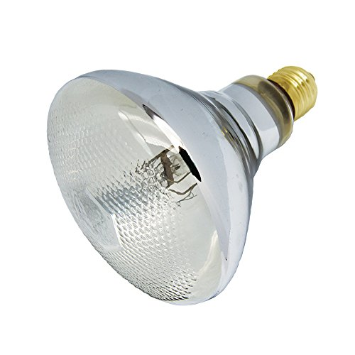 UVA UVB Mercury Vapor Bulb Self-Ballasted UV Heat Lamp/Bulb/Light for Reptile and Amphibian (100W COATED) (100w Mercury Vapor Bulb)