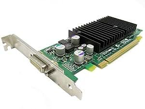 HP NVIDIA Quadro fx330–Adaptador de tarjeta gráfica–Quadro FX 330–PCI Express x16de perfil bajo–64MB DDR