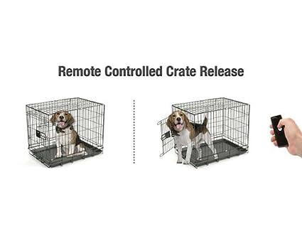Amazon Easyout Remote Pet Door Opener Double Latch Easyout 2