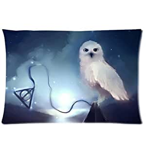 Every New Day Harry Potter Hedwig Unique Custom Zippered Pillow Cases 20x30 inches(50x75cm) (Two sides)