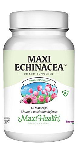 Maxi Health Echinacea - 4% Echinacosides Standardized Extract - Immune Boost - 60 Capsules - Kosher