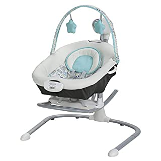 Graco Duet Sway Swing with Portable Rocker, Roam