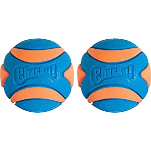 Chuckit Ultra Squeaker Ball, Medium, Pack of 2 36