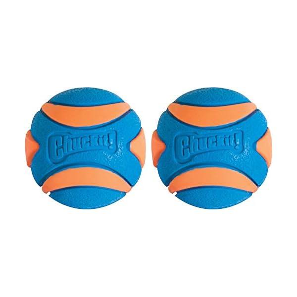 Chuckit Ultra Squeaker Ball, Medium, Pack of 2 1
