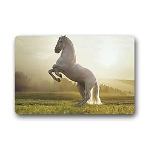 """White Horse2 Customized Outdoor and Indoor Art Printing Door Mat 25.6""""x 15.7"""""""