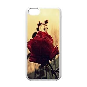 Iphone 5C Case, rose 40 Case for Iphone 5C White