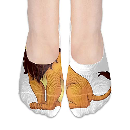 No Show Socks Lion Cool Womens Low Cut Sock Loafers Invisible Socks for Girl