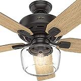 Hunter 28522 Coronado 55 Inch Ceiling Fan Amber Bronze