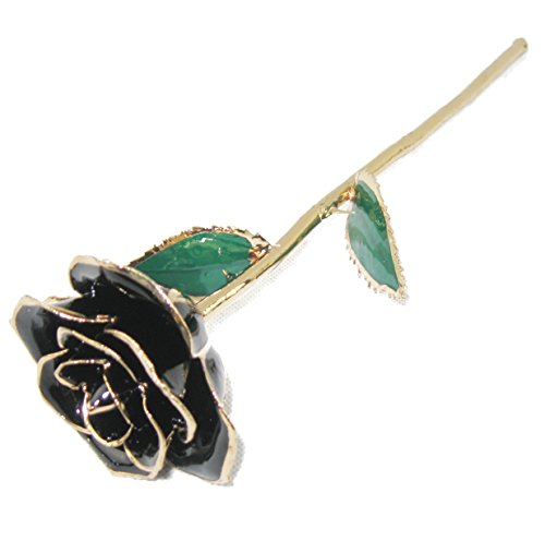 ZJchao Gold Rose Love Forever Long Stem Dipped 24k Rose Foil Trim , Gifts for Her (Black)