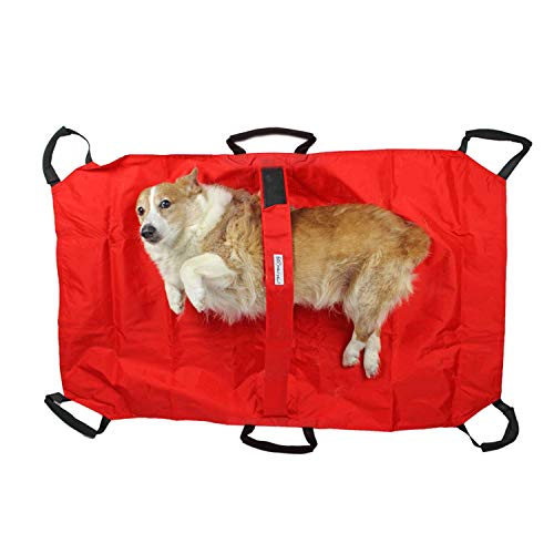 4fec9c89ce Walkin  Transport Stretcher for Dogs with Safety Strap to Keep Your Pet  Secure