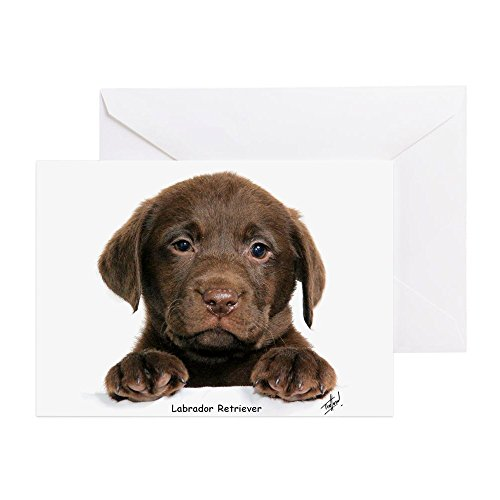 CafePress Chocolate Labrador Retriever Puppy 9Y270D 050 Gree Greeting Card (10-pack), Note Card with Blank Inside, Birthday Card Glossy