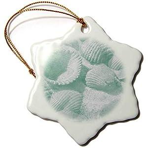 41xvwgL3QKL._SS300_ 100+ Seashell Christmas Ornaments and Shell Ornaments