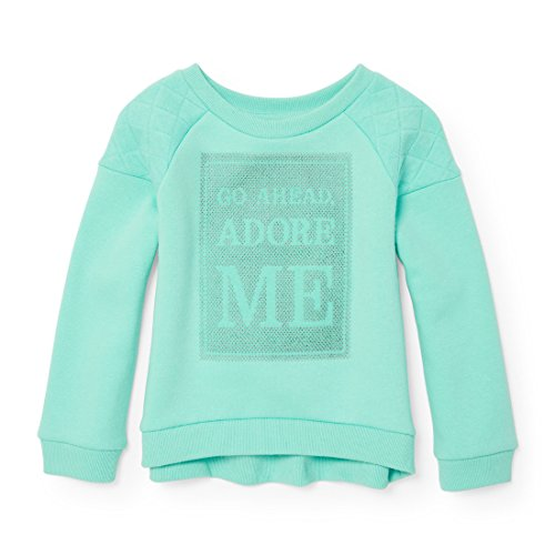 The Children's Place Baby Little Girls' Quilted Sleeve Popover Sweatshirt, Mint Tint 90630, 5T -
