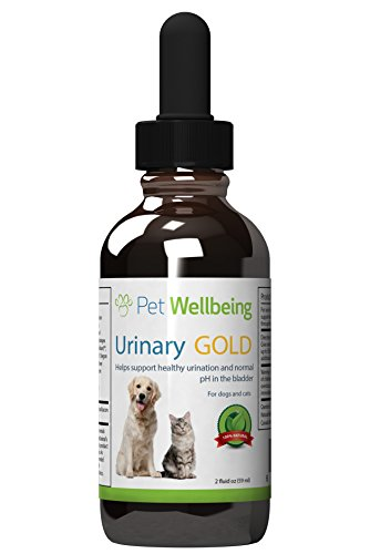 Pet Wellbeing – Urinary Gold for Cats – Natural Support for Cat Urinary Tract Health — 2oz(59ml) 41xvyJSbtgL