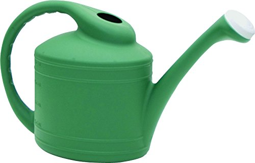 Southern Patio 2 Gallon Watering Can, Fern by Southern Patio