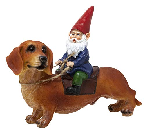 Funny Guy Mugs Gnome and a Dachshund Garden Gnome Statue- Indoor/Outdoor Garden Gnome Sculpture for Patio, Yard or Lawn