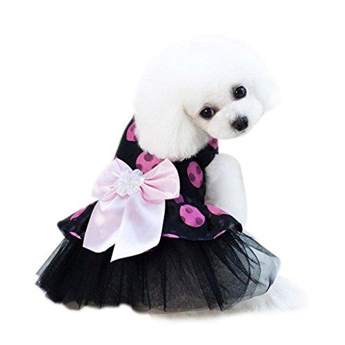 Chat Chien Bowknot Femelle À Petit Princesse Dot Pois chat Jupe Robe Chiot Veste Chien Rose Mignon Été Vetement Chihuahua Angelof qAfg00