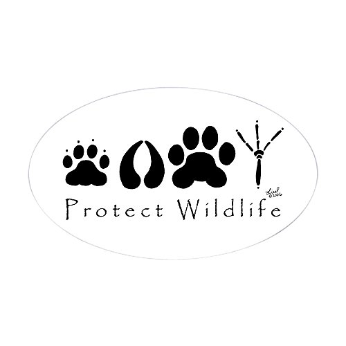 cafepress-protect-wildlife-oval-sticker-oval-bumper-sticker-euro-oval-car-decal
