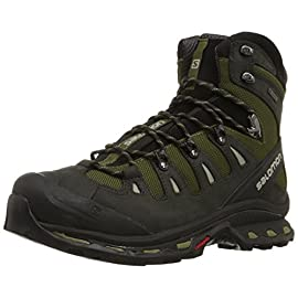Salomon Men's Quest 4d 2 Gtx Backpacking Boot