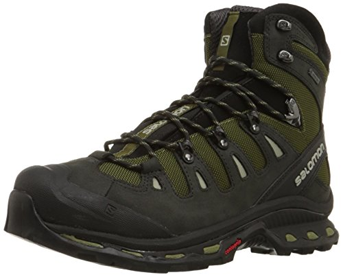 Salomon Men's Quest 4d 2 Gtx Backpacking Boot, Iguana Green/Asphalt/Dark Titanium, 8.5 M US