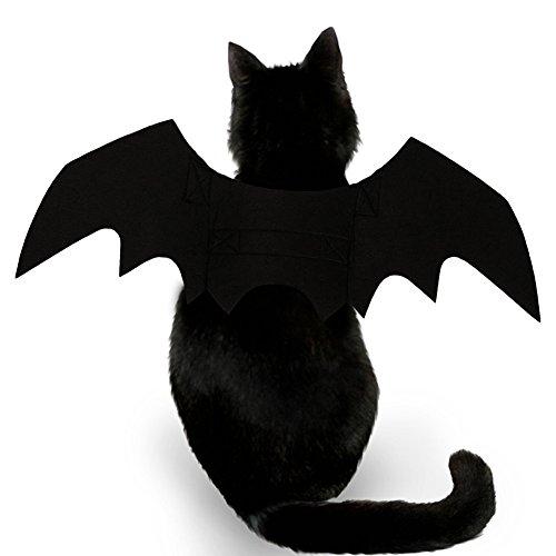 Buy cat costumes