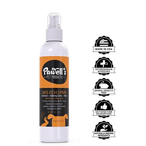 Flea Bites Itch (NEW Natural Oatmeal Pet, Cat & Dog Itch Spray | Safe Hypoallergenic Soothing Cat & Dog Anti Itch Spray for Dry, Itchy, Flea & Tick bites, hot spots, allergies| Cat & Dog Between Bath Spray)