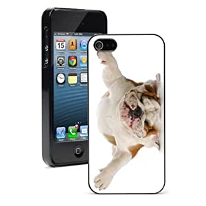 For iPhone 4 4S Hard Case Cover Bulldog Upside down