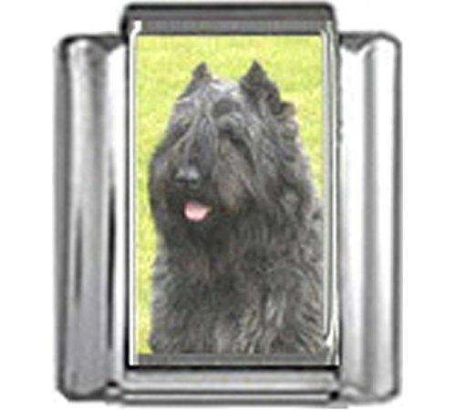 Stylysh Charms Bouvier DES Flandres Dog Photo Italian 9mm Link LinkDG099 ()
