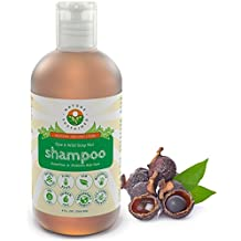 Raw & Wildcrafted Shampoo by Nature Sustained – Organic Dandruff Eczema & Psoriasis Shampoo - pH Balanced Itchy Scalp Relief – Made from Natural Probiotics & Soap Nuts – 9 Fl. Oz.
