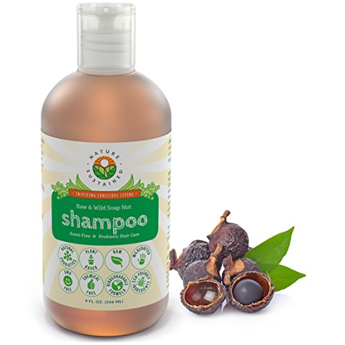 Nature Sustained Raw Natural Shampoo – Organic Dandruff Eczema & Psoriasis Shampoo - pH Balanced Itchy Scalp Relief – Made from Natural Probiotics & Soap Nuts – 9 Fl. Oz.