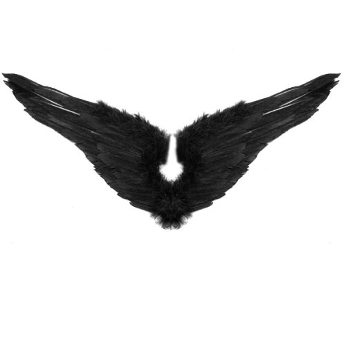SACAS New Black Feather Angel wings with Free Halo (Black Feather Wings)