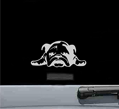 JS Artworks English Bulldog Puppy Vinyl Decal Sticker (SILVER)