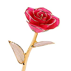 ZJchao Real Rose Dipped in 24k Gold, Forever Preserved Long Stem Rose with Golden Leaf, Idea for Her 47